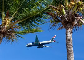 Search for Flight Deals with SkyScanner